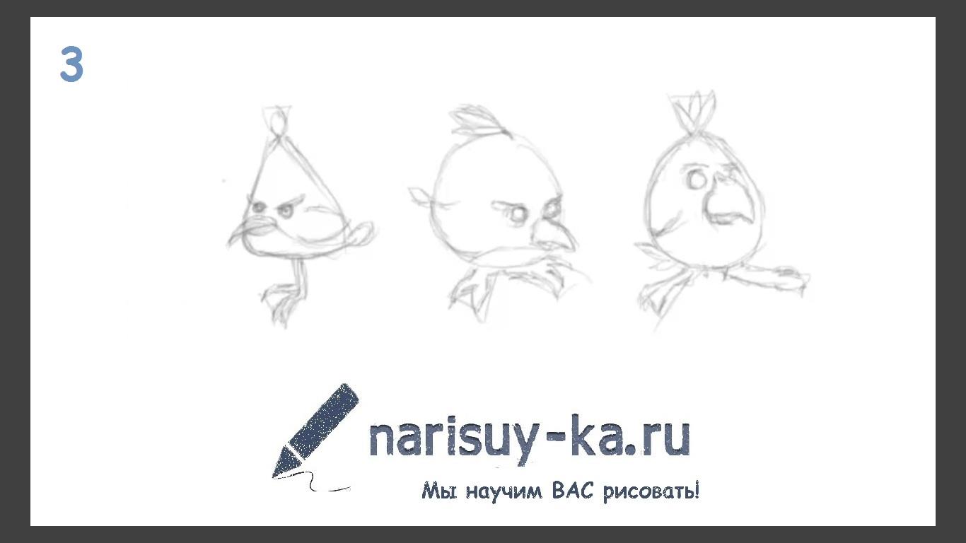 Учимся рисовать птиц поэтапно для 183