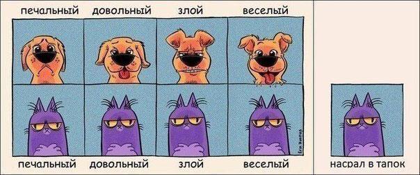 krasivye-neobychnye-i-originalnye-kartinki-27