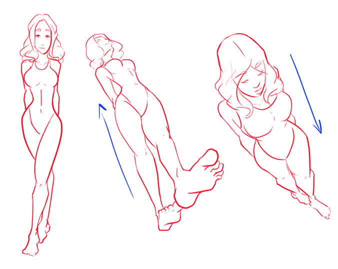 женское тело вид снизу фото