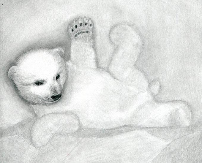 Рисуем лапы белого медвежонка