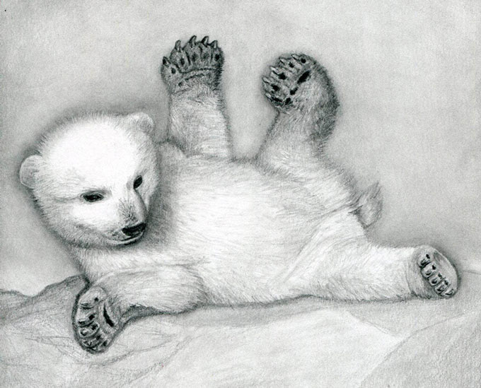 Рисуем тени на теле белого медвежонка
