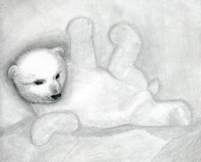 Рисуем шерсть белого медвежонка
