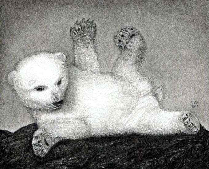 Как нарисовать белого медвежонка