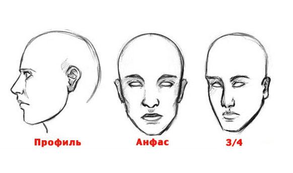 Эскиз головы человека с различных сторон