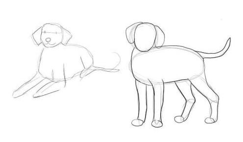 Рисуем контуры тел Далматинцев