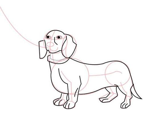 Дорисовываем собаку
