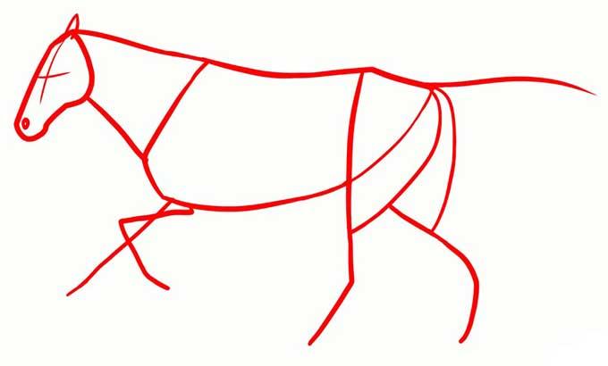 Рисуем фигуру лошади