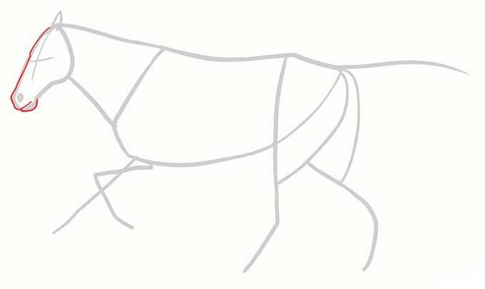 Рисуем голову бегущего коня