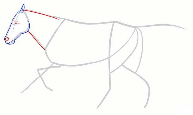 Рисуем глаза, ноздрю и шею бегущего коня