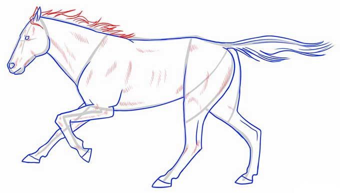Рисуем гриву и линии рельефа