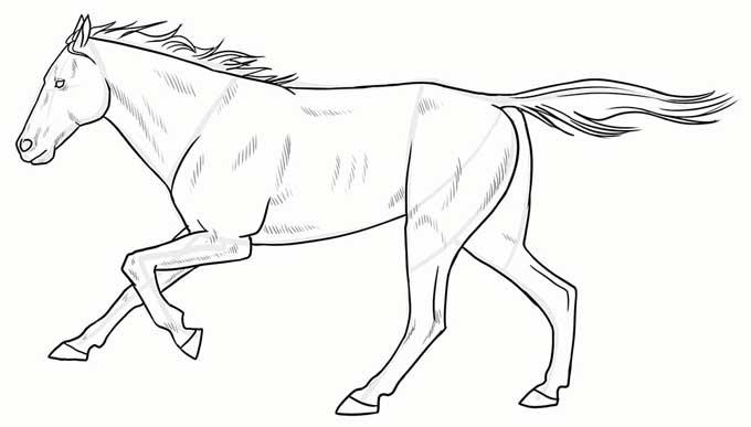 Готовый рисунок бегущего коня