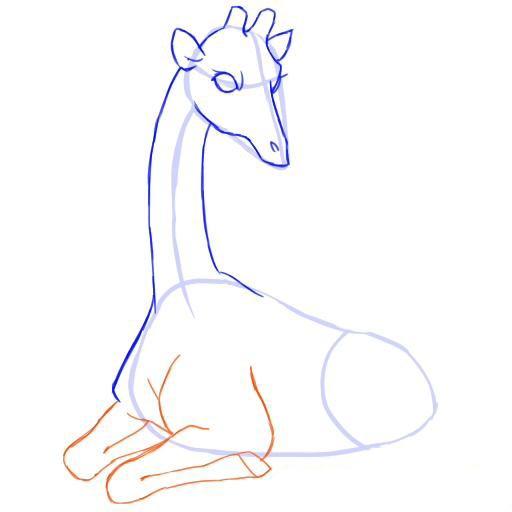 Рисуем передние ноги жирафа