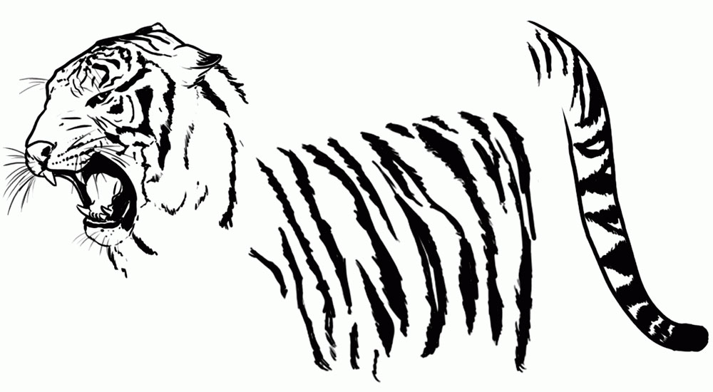 kak-narisovat-tigra-10