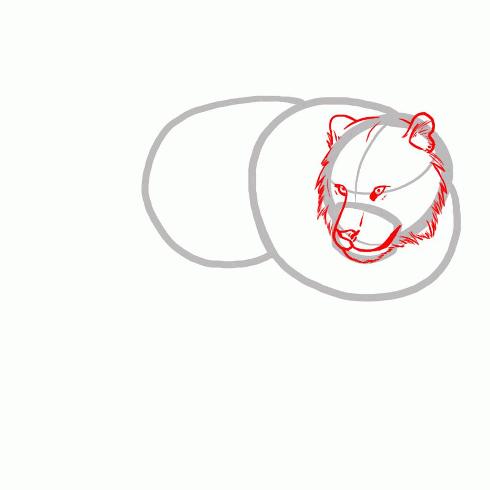 Рисуем голову, глаза, рот тигра