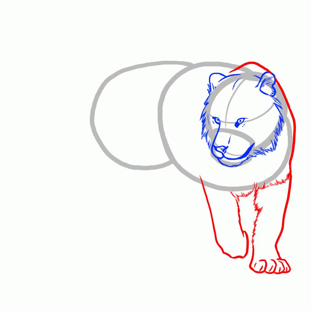 Рисуем шею и передние лапы тигра
