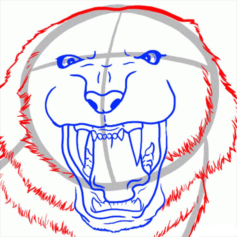 kak-narisovat-tigra-8
