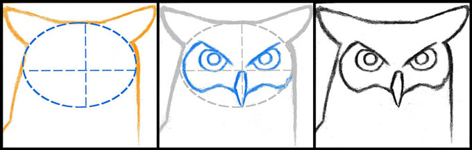 Этапы рисования совы