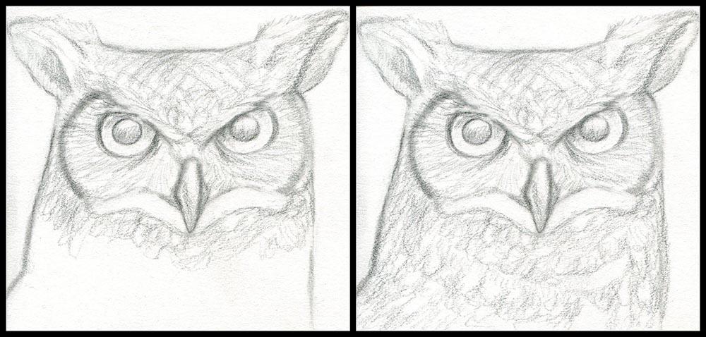 Продолжаем рисовать голову совы