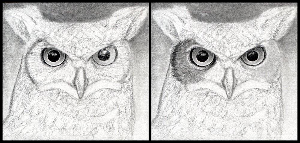 Рисуем глаза совы