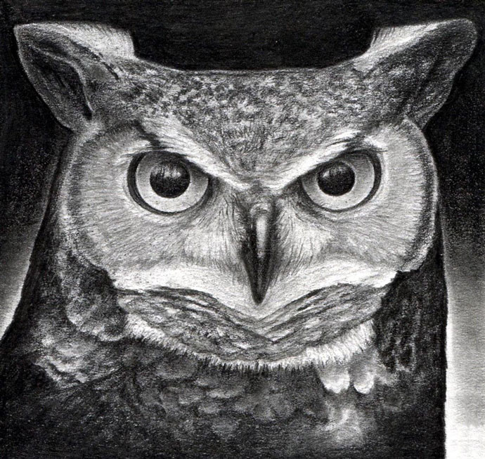Учимся как рисовать сову карандашом