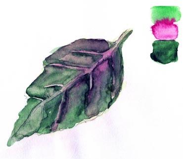 Многослойная живопись в акварели — ЛЕССИРОВКА